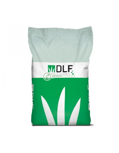 Насіння DLF Universal