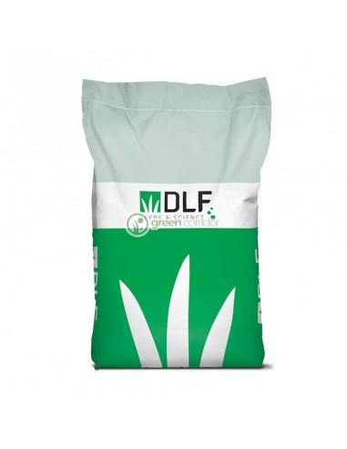 Семена DLF Universal